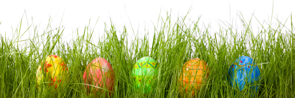 Easter+eggs+in+grass+cropped - Springslade Lodge
